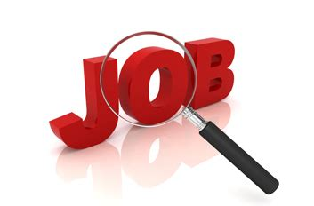 Cover letter sample job application bank